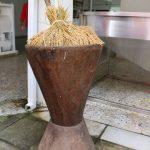 arroz-caucasiano-3