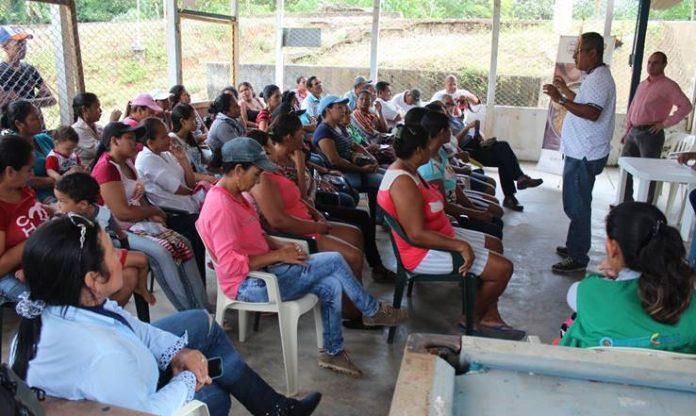 Oro Legal y Ocensa socializan proyecto apícola para madres cabeza de familia de Caucasia