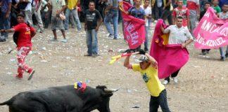 Corralejas, ¿tradición o barbarie?